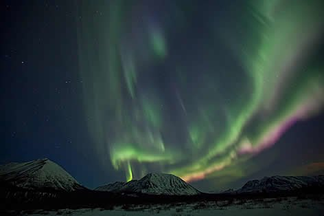 Winter Aurora Whitehorse 3N4D (11/29-04/13) + City Tour